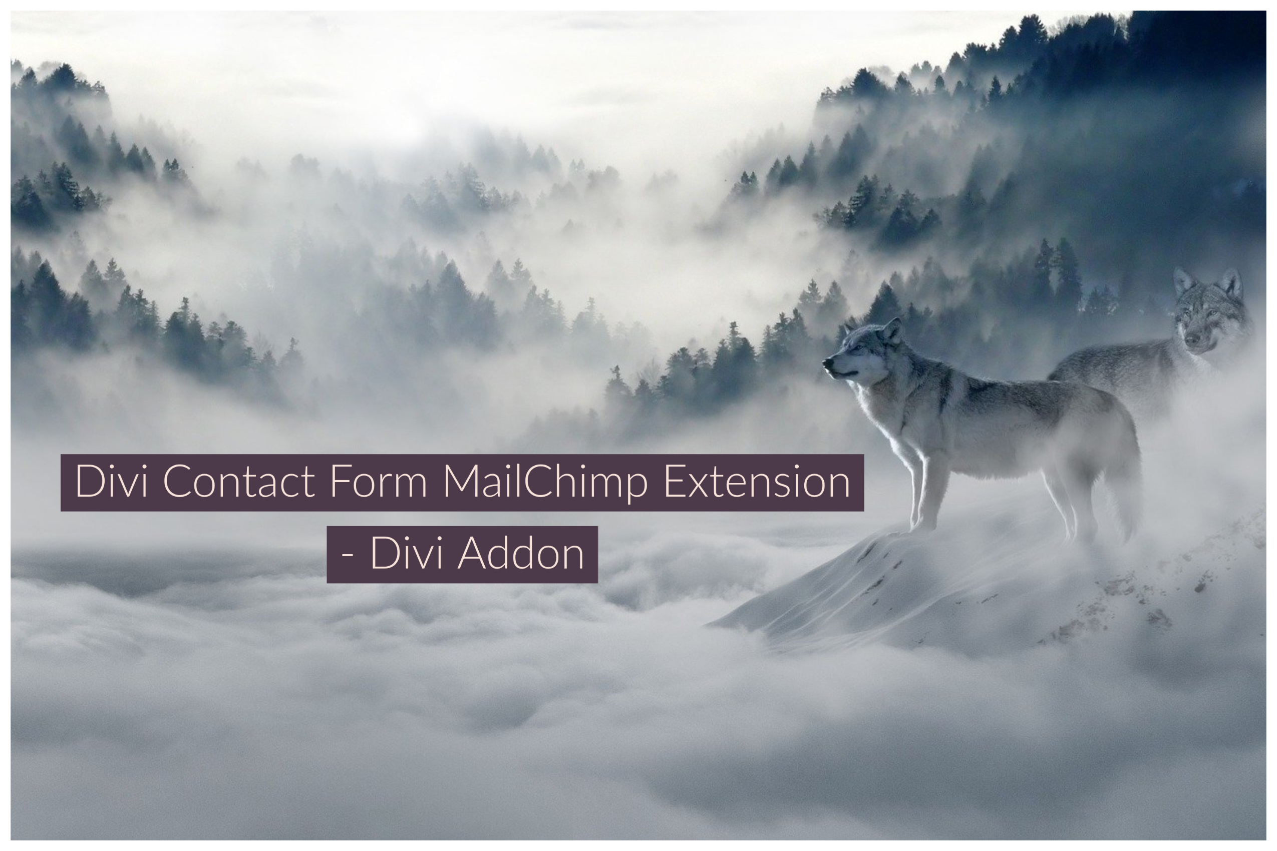 Divi Contact Form MailChimp Extension